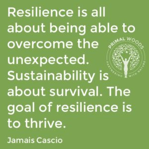 sutainability and resilience defined
