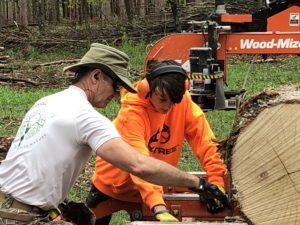 portable sawmill service