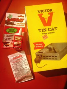 victor tin cat